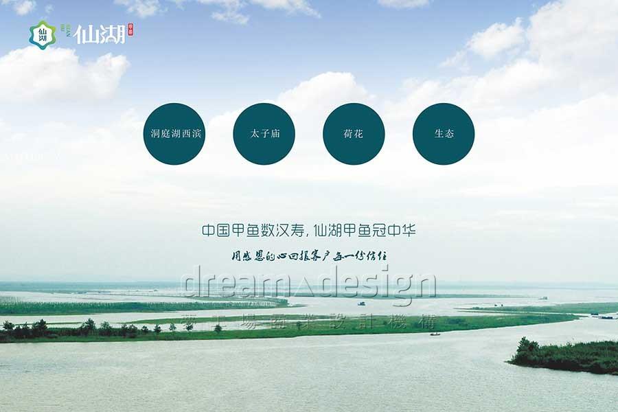 中国甲鱼数汉寿,仙湖甲鱼冠中华