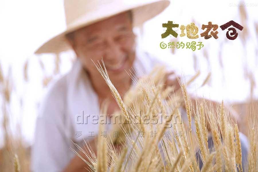 大地农仓-品牌设计